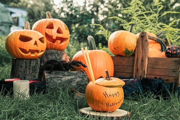 How to preserve a pumpkin after carving?